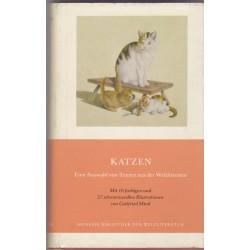 Katzen, Frederico Hinderman
