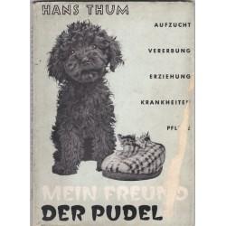 Mein Freund der Pudel, Hans...