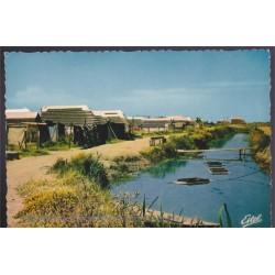 En Camargue, cabanes de...