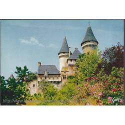 Château de Puymartin -...