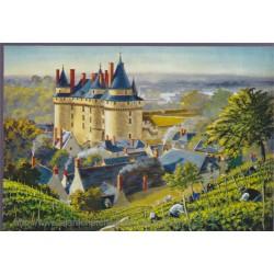 Langeais, châteaux de la...