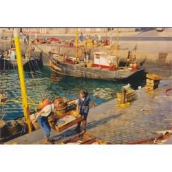 Cherbourg, retour de pêche...