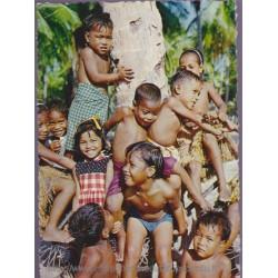 Micronésie, îles Ellicée  -...